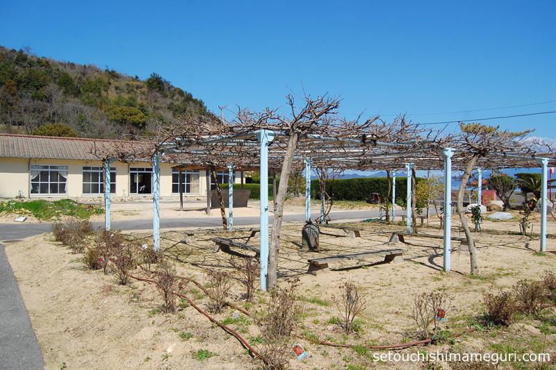 大島 居住区の整えられた庭