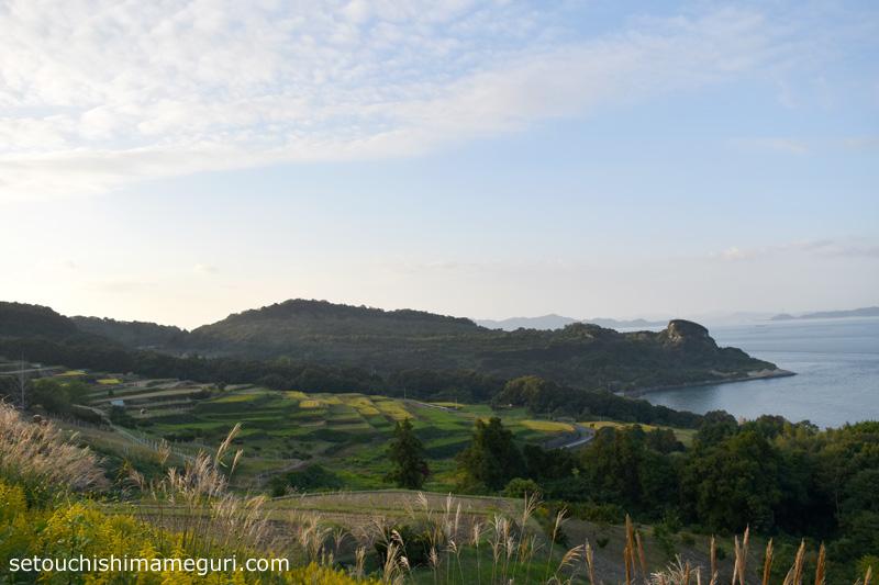 豊島の段々畑